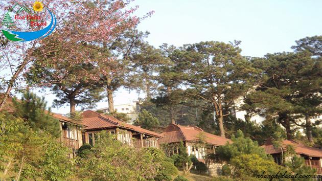 Nhà Nghỉ Đà Lạt